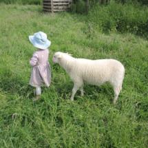 12017.06.04._14_'schapelen'